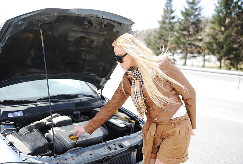 Michigan Auto Pros Learn More About Your Car