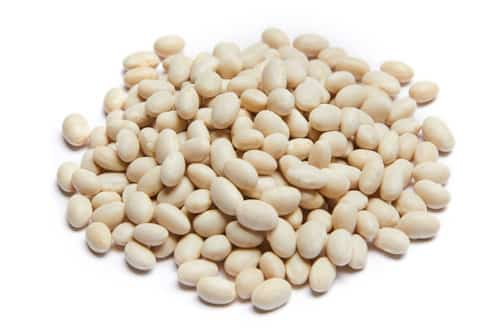 Michigan Navy Bean Pile