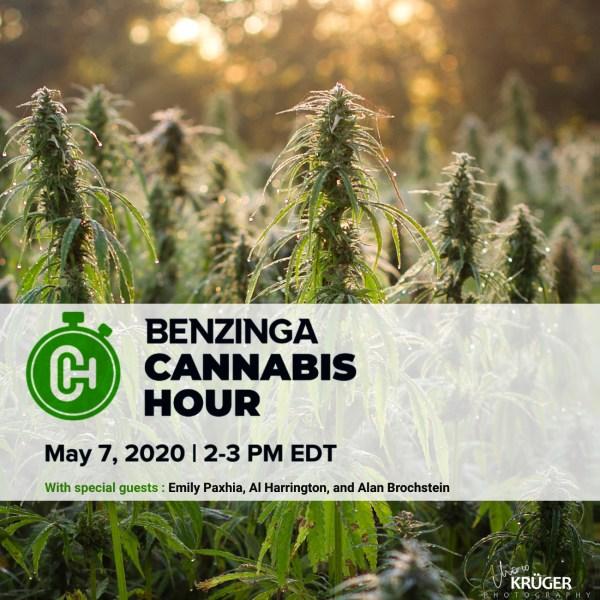 Benzinga Cannabis Happy Hour