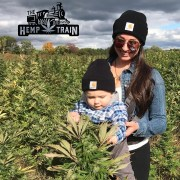 The Hemp Train U-Pick Cannabis