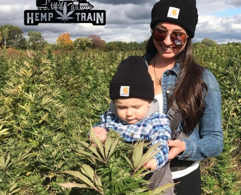 The Hemp Train U-Pick Cannabis