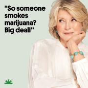 NORML Marijuana Is No Big Deal