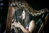 #2 - Connla - This photo is of my dear friend Ciara McCafferty of the group Connla, taken during the 2019 fest. For me, the perspective through the harp strings and the lighting bring the performance to life. I can feel the power in Ciara's voice. Connla is one of my favorite bands!