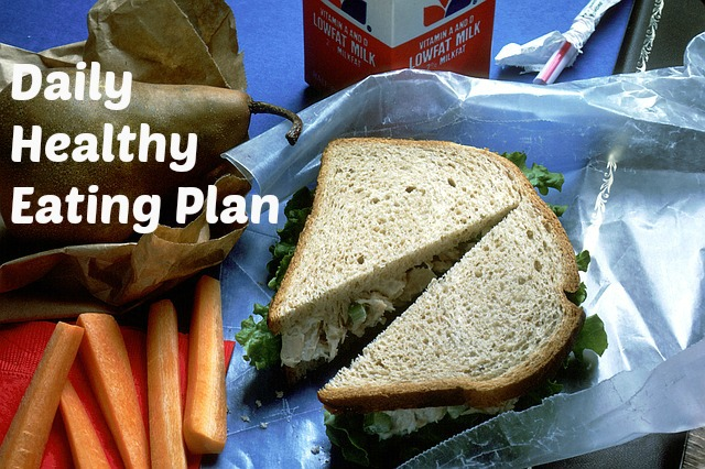 Daily Healthy Eating Plan