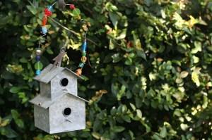 birdhouse-85728_640