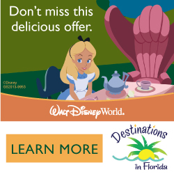 Special Offer on a Kid Size Package ~ Walt Disney World