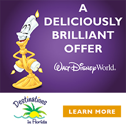 New Disney Visa Cardholder Discount for Summer Walt Disney World Travel!