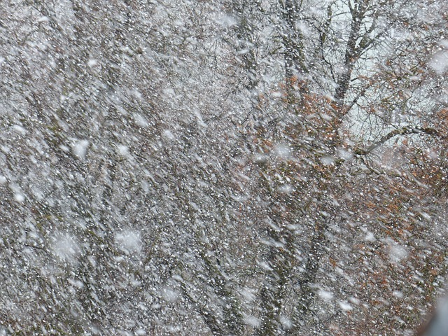 Southeastern Michigan Gearing up for First Big Snowfall of the Season