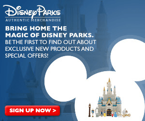Disney Parks Authentic Merchandise and More