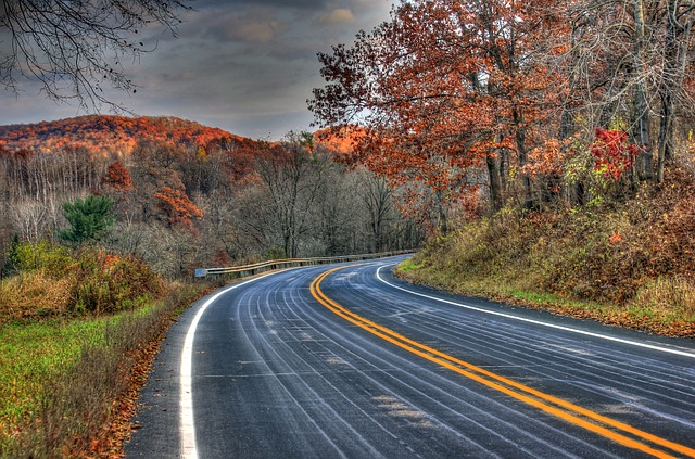 Autumn Road Trip Ideas for the Entire Family