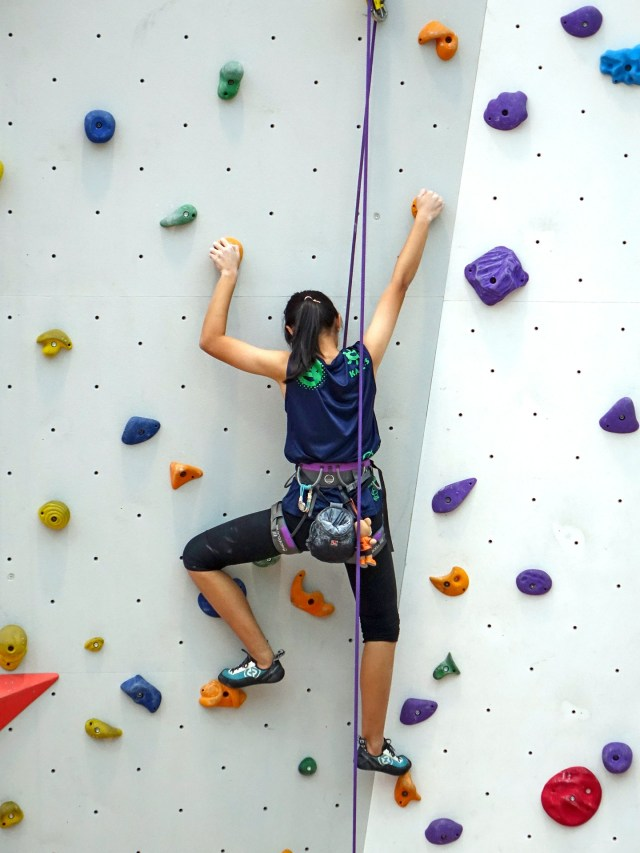 climbing-480459_1920