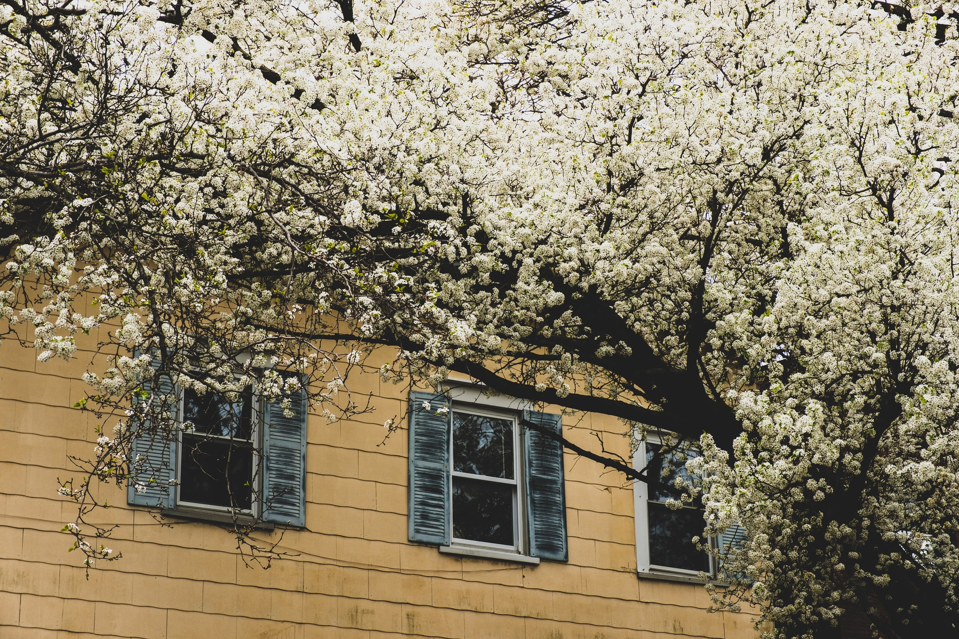 4 Ways to Prep Your Home and Family for the Springtime
