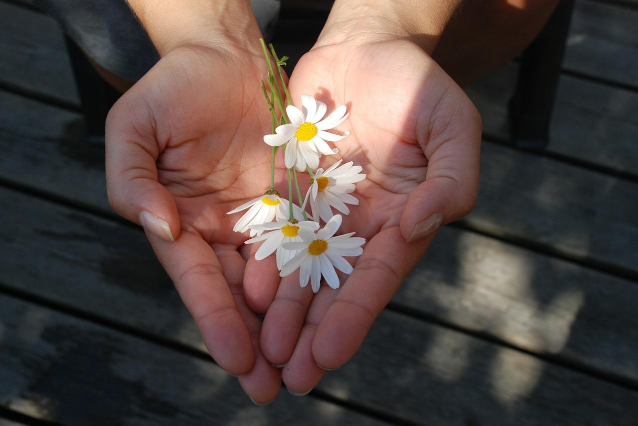 Parenting Expert: 6 Tips to Get Kids Volunteering this Summer