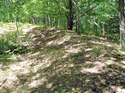 Missaukee Indian Mounds