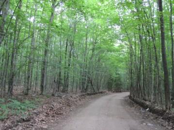 MNA's Moran Peter Memorial Nature Sanctuary