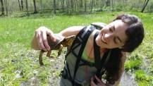 Kali Bird, MNA volunteer holding a box turtle. Photo by Matt Schultz