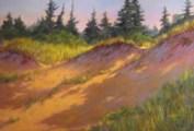 Dune Shadows