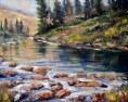 rocky mountain stream and rocks june 7