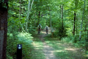 City Forest Bike Trail