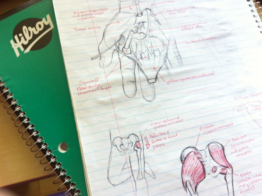 Michiko Maruyama Clerkship Sketchbook