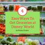 All The Options For Disney World Grocery Delivery To Your