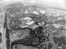 Disneyland Timeline Year