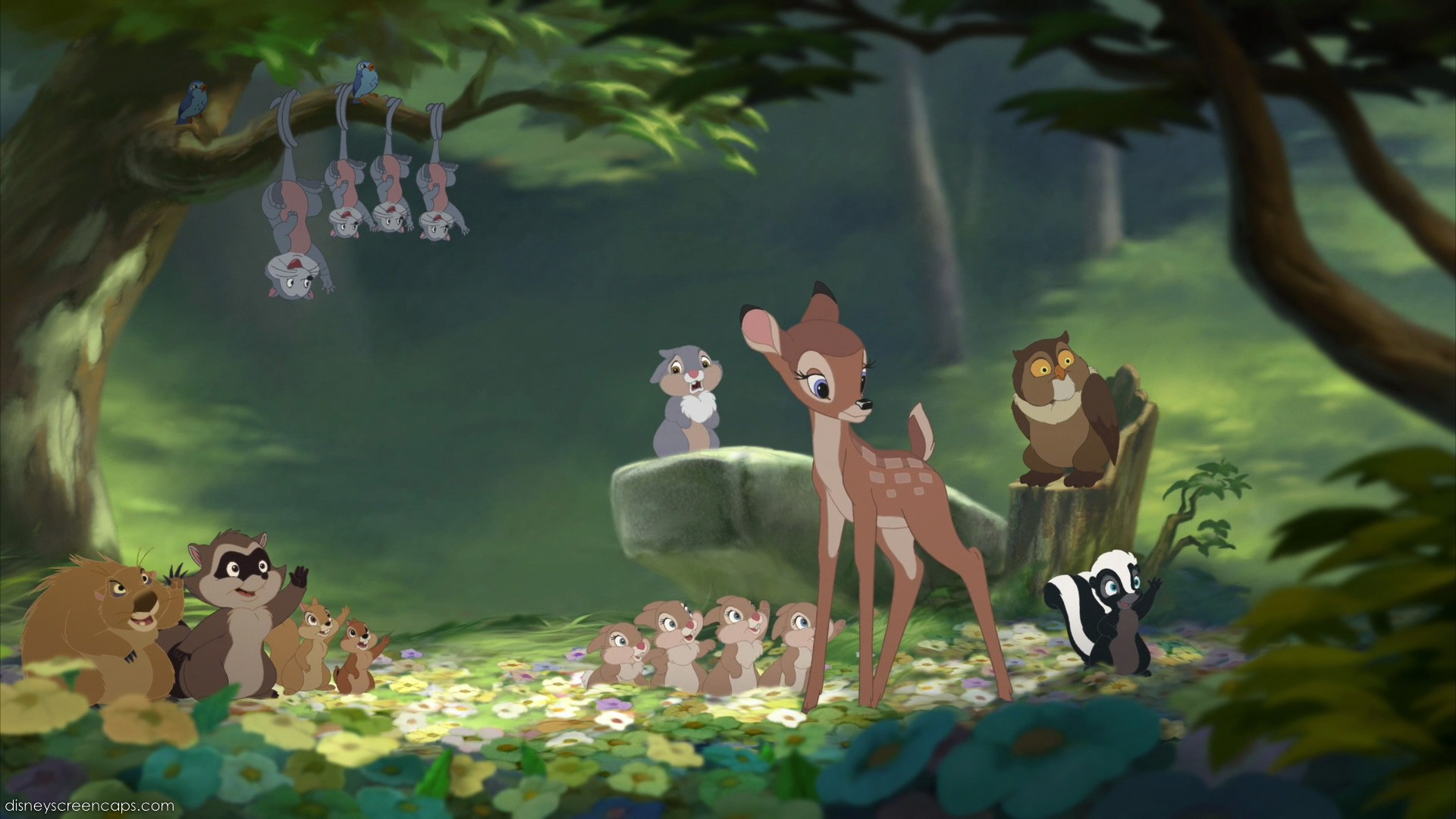 Chip And Dale Wallpaper Hd Bambi Mickey Mouse Pictures