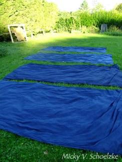 Teinture indigo sur tissus de laine