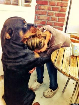 Perro abrazando a mujer