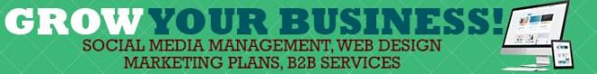 royal heir ent b2b web design, marketing, promotion, social media management