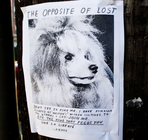 The Opposite of Lost Dog flyers by Nathaniel Russell