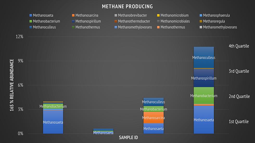 methane producing