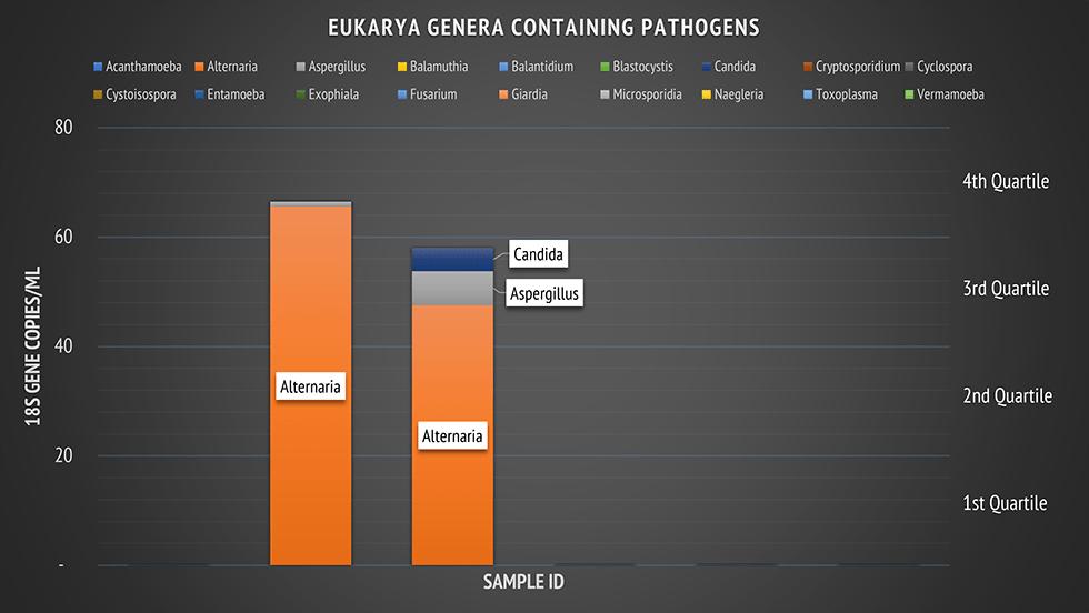 eukarya genera containing pathogens