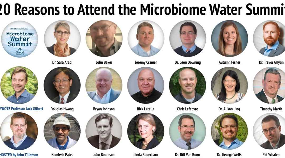 20 Reasons to Attend Microbe Detectives' Leadership Summit