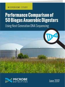 biogas digester study