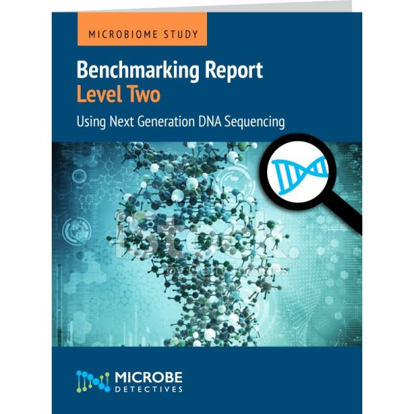benchmarking level 2