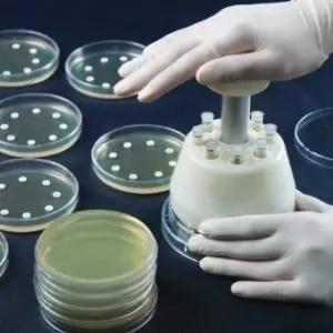 Antibiotic disc dispenser