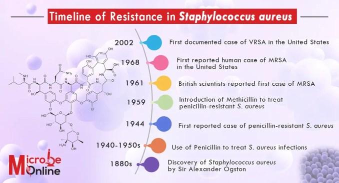 Resistance in S.aureus