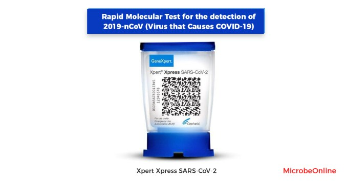 Detection of SARS-CoV-2 for COVID-19