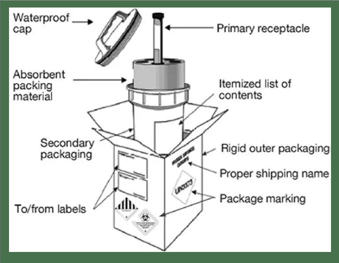 Basic triple packaging system