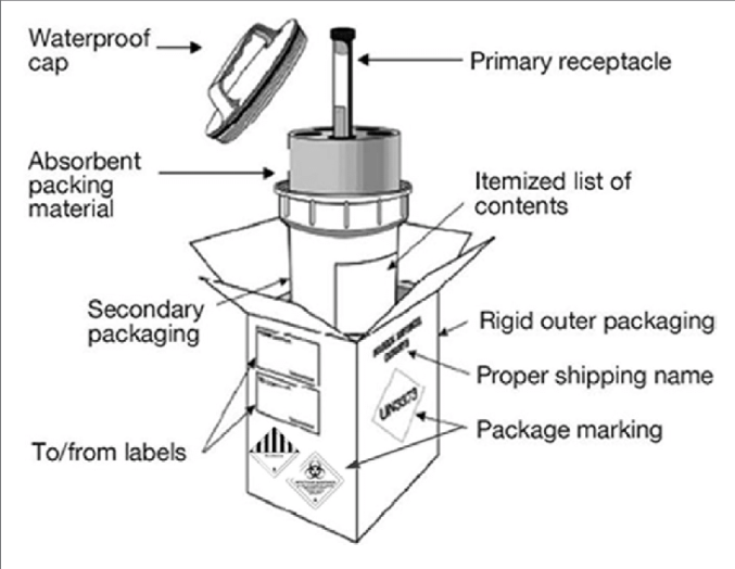 Basic triple packaging system