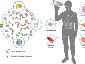 Lactic acid bacteria benefits