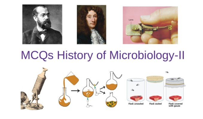 History of Microbiology II