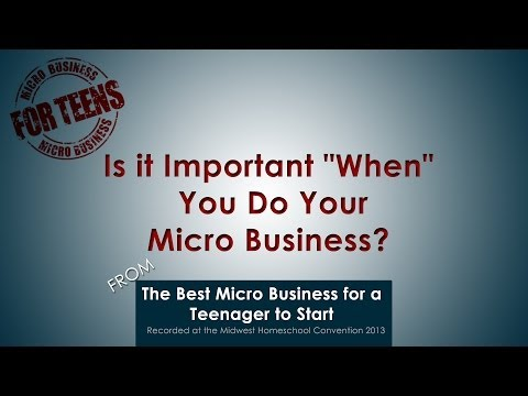 "Video: Is it Important ""When"" You Do Your Micro Business?"