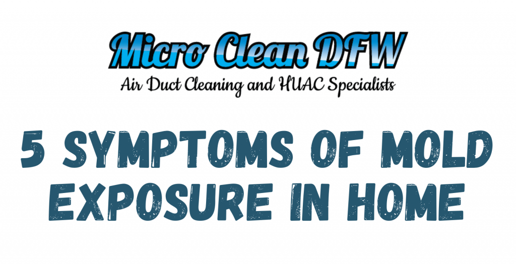 5 Symptoms of Mold Exposure in Home
