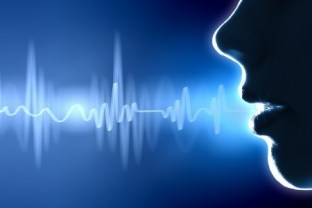 VOICE RECOGNITION SECURITY SYSTEM