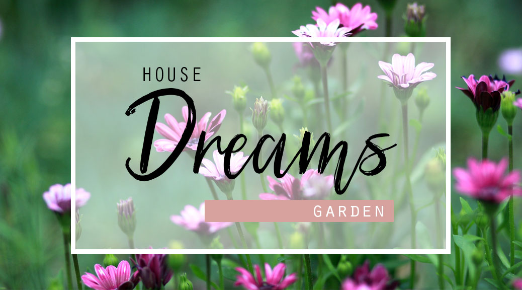 House dreams #2 Garden