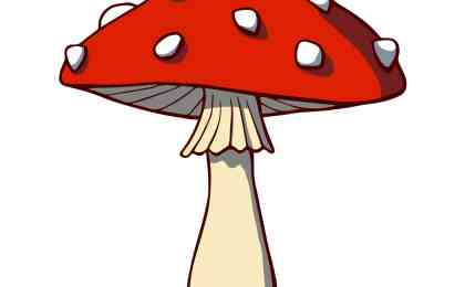 Psilocybin Magical Mushrooms For Depression