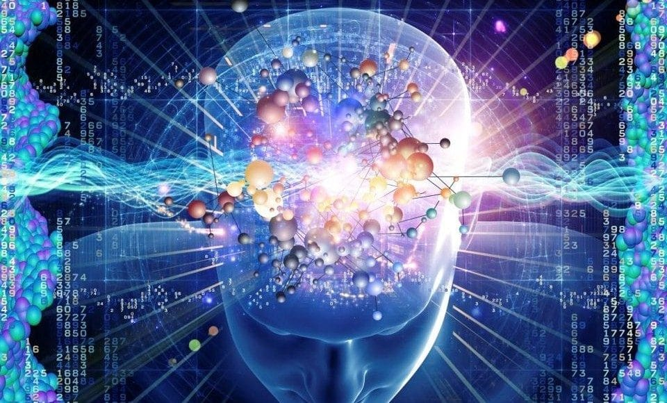 What Does DMT Do To Our Brains?