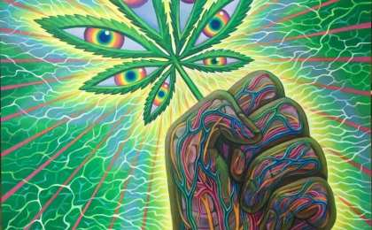 What the Future Holds for Medical Psychedelics in Canada
